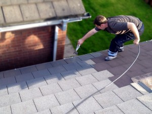 Roofman professional roof painting service.