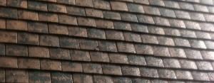 Professional roof painting services from Roofman.