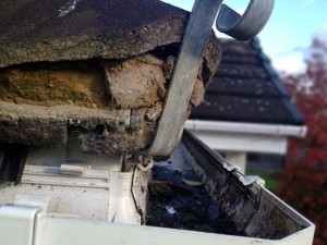 Roofman professional roof repair service.