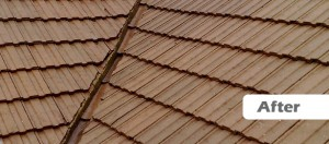 Example of a roof after receiving the Roofman fungicidal treatment.