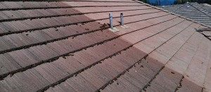 Roofman roof cleaning, before and after example photograph.